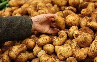 TÜK patatesin satış fiyatını düşürdü