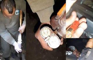 Kaçak avlanan 2 kişi tutuklandı