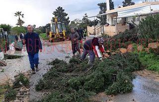İskele ve Karpaz bölgelerinde afet yaşanıyor