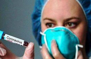İngiltere'de 4 okula korona virüsü tatili