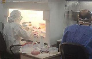 Genetik Laboratuvarı dünyada kalitesi tartışılmayan...