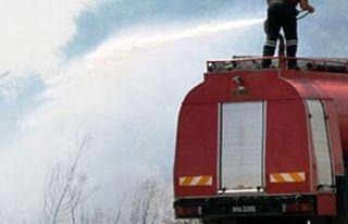 Yiğitler, Vadili ve Paşaköy arasındaki yangın...