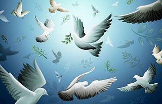 """Girne'de """"Barışa Kulaç Atıyoruz"""" etkinliği"""
