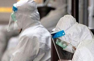 Güney'de koronavirüsle ilgili önlemler hafif...