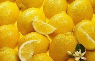 Cypfruvex, sıkma limonun tonunu 900 TL'ye alacak