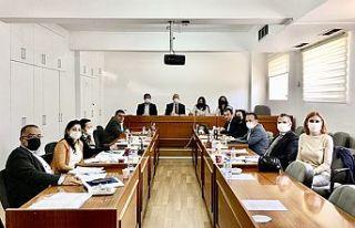 Meclis AB Uyum Komİtesİ Hal yasasını görüşmeye...