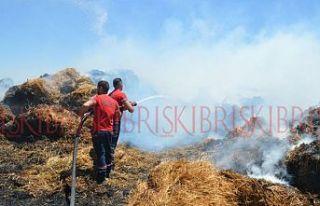 Akova'da çıkan yangında 250 rulo balya kül oldu