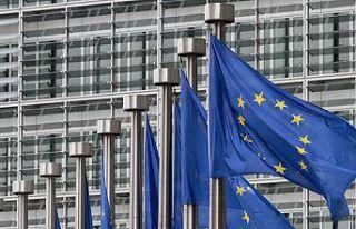 """Avrupa komisyonu Kıbrıs temsilciliği"""" Başkanlığına..."""