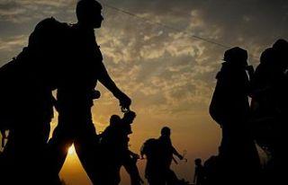 Avrupa Konseyi, savunmasız göçmen ve sığınmacıların...