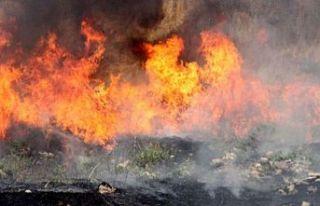 Güzelyurt-Kalkanlı yolunda arazi yangını