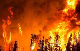 Orman yangınlarındaki ihmallere ilişkin meclis...