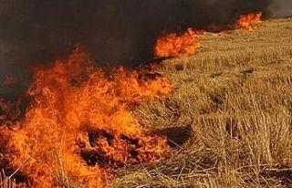 Sandallar köyündeki yangında balya ve arpalar yandı