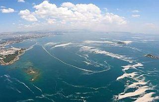 Marmara Denizi'ndeki Müsilaj uçakla havadan...