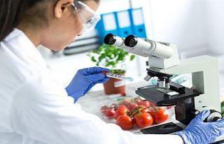 Üç ithal üründe limit üstü bitki koruma ürünü...