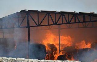 800 adet balyave 2 iş aracıalev alev yandı