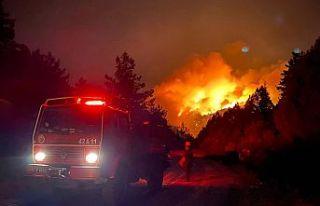 antalya'daki yangında 1 kişi hayatını kaybetti