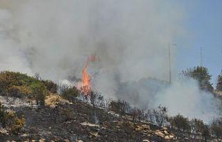 Ormana izmaritatarak yangınçıkarmakhala suç...