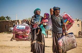 Uluslararası Göç Örgütü'ne göre Yemen'den...