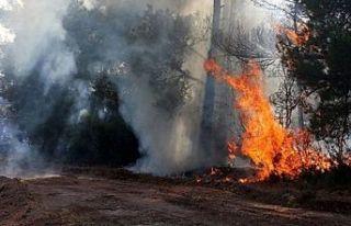İtfaiye Müdürlüğü yangınları önleme tedbirlerini...