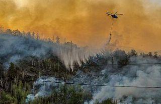 Rusya, doğusundaki orman yangınlarıyla mücadeleyi...