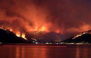 Türkiye'de yangınlarda 5'inci gün! 111 yangın...