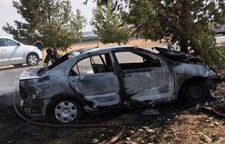 Alayköy yolunda ağaca çarpan araç yandı
