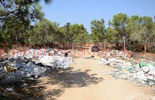 Ormanlarımız çöplük değildir!