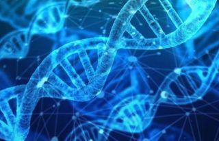 İnsanda genetik değişikliğe izin verilecek