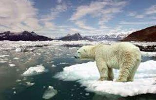 İklim değişikliğinde '1,5 derece' uyarısı