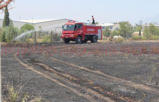 İzmirillodan çıkan kıvılcım yangına neden oldu