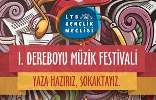Dereboyu'nda müzik festivali düzenleniyor