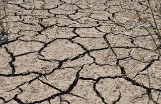 Kuraklığa dayanıklı tarıma geçmeliyiz
