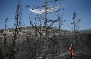 Yunanistan'daki yangın hızla yayılıyor