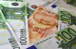 Eylülde en fazla reel getiri Euro'dan