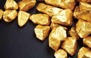 Güney'de altın üretimi yapılması planlanıyor