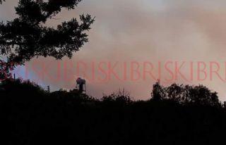 Pirgo'da büyük yangın: Bir itfaiyeci yaralandı
