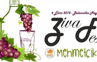 Ziva Fest yarın