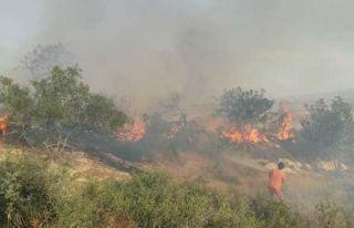 Havan mermisi yangına neden oldu!