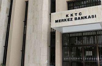 Pelin Yaylalı Merkez Bankası Müdür Yardımcısı olarak atandı