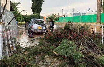 Servi ağaçları gövdeden koptu, ev ve araçlar hasar gördü