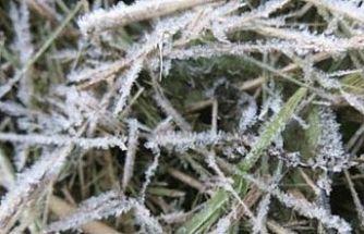 Yarın ve çarşamba sabahı don olayı bekleniyor