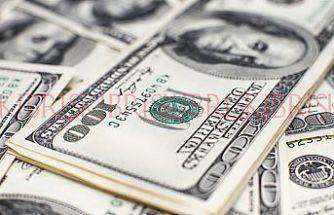 Dolar dokuz ayın zirvesinde
