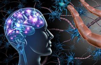 MS hastalığı kadınlarda erkeklerden 3 kat fazla görülüyor