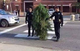 Yer Sırbistan.... Ağaç kılığına girdi! Sokağa çıkma yasağını deldi