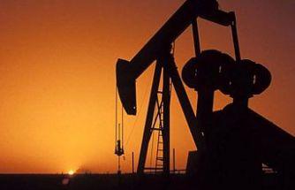 Petrol üretimi 10 milyon varil azalacak