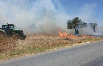 Paşaköy - Mandıralar bölgesinde yangın