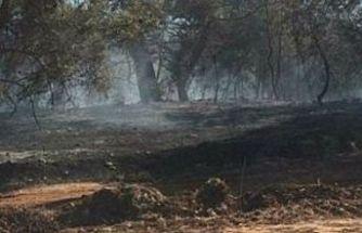 Tepebaşı'nda meydana gelen yangın kontrol altına alındı