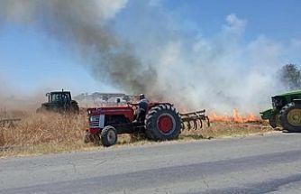 YİNE YANGIN: Paşaköy'de yangın 20 dönüm buğday ve 10 adet zeytin kısmen yandı