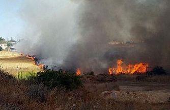 30 dönümlük çam ağacı ,maki bitki örtüsü ve kuru otlar yandı