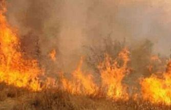 Dikmen – Taşkent arasında dağlık arazide yangın!